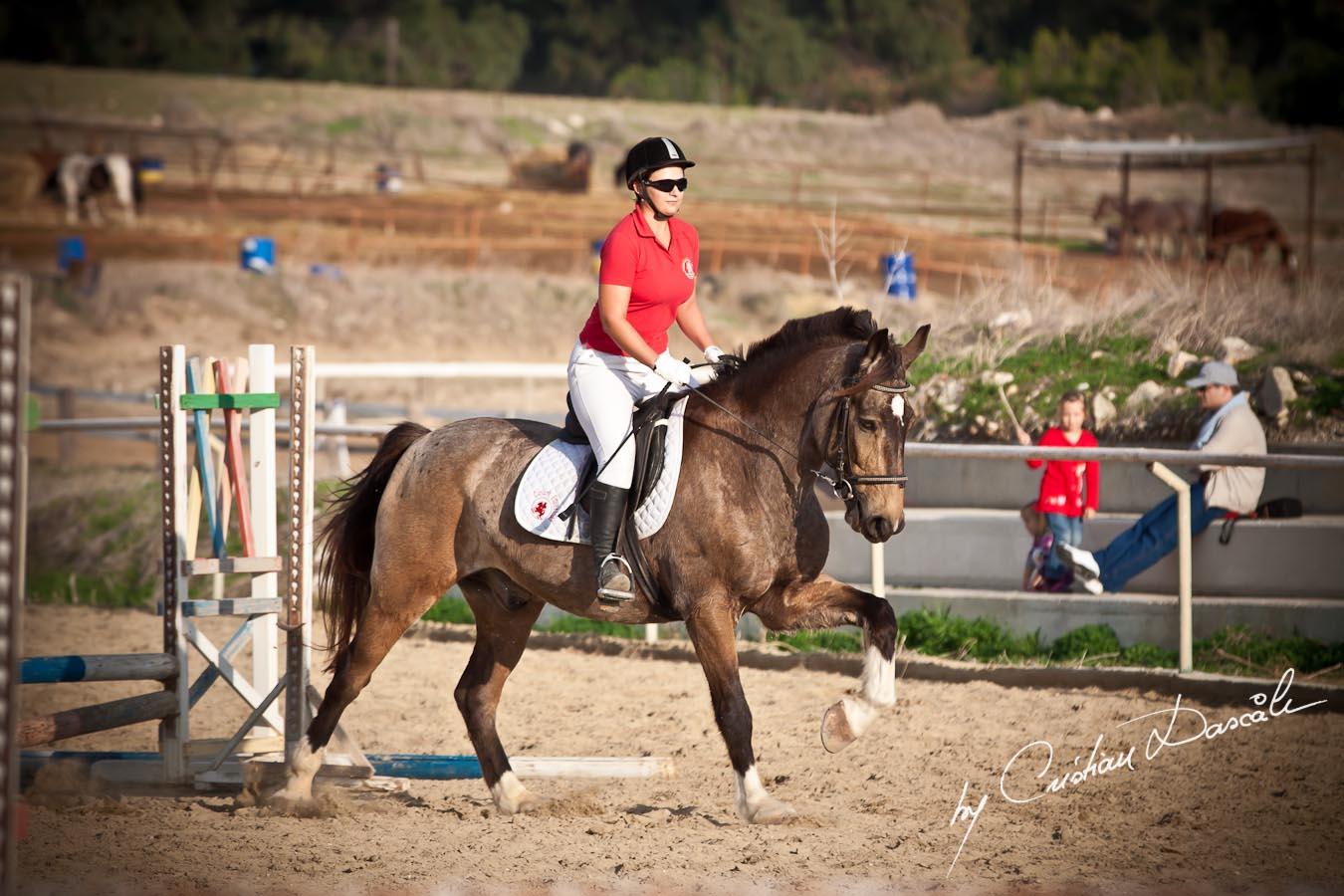 Curium Equestrian Centre - Horse Riding Competition. Photographer: Cristian Dascalu