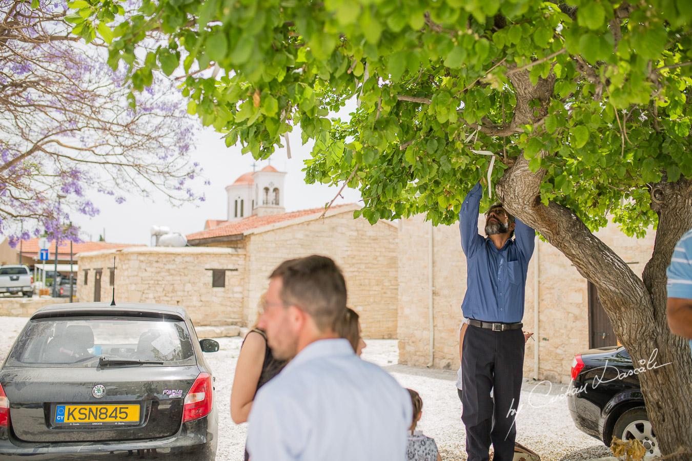Joyous Christening in Limassol - 23