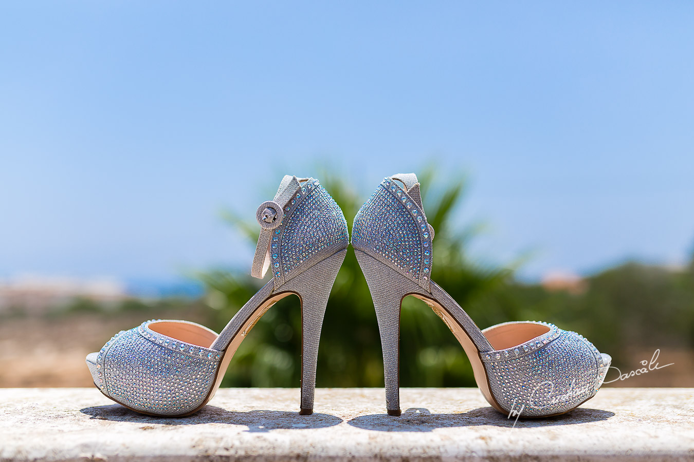 Wedding detailsEverlasting Wedding Photography in Ayia Napa. Photography by Cristian DascaluEverlasting Wedding Photography in Ayia Napa. Photography by Cristian Dascalu