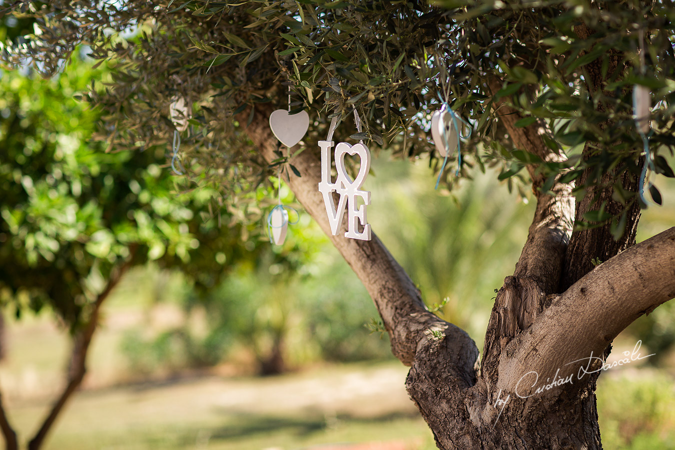 Beautiful wedding decorations captured at a wedding at Minthis Hills in Cyprus, by Cristian Dascalu.
