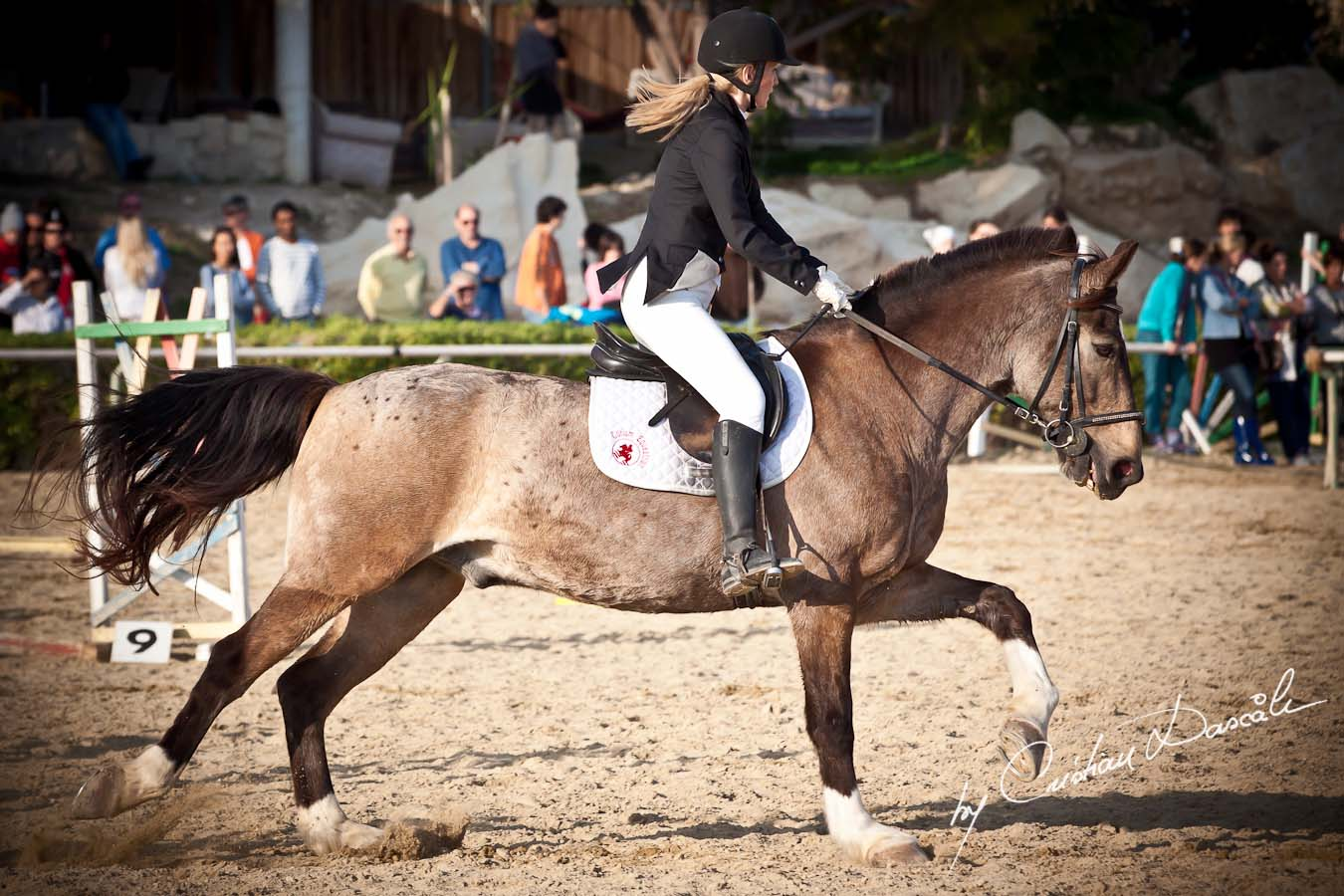 Curium Equestrian Centre - Horse Riding Competition. Photographer: Cristian Dascalu