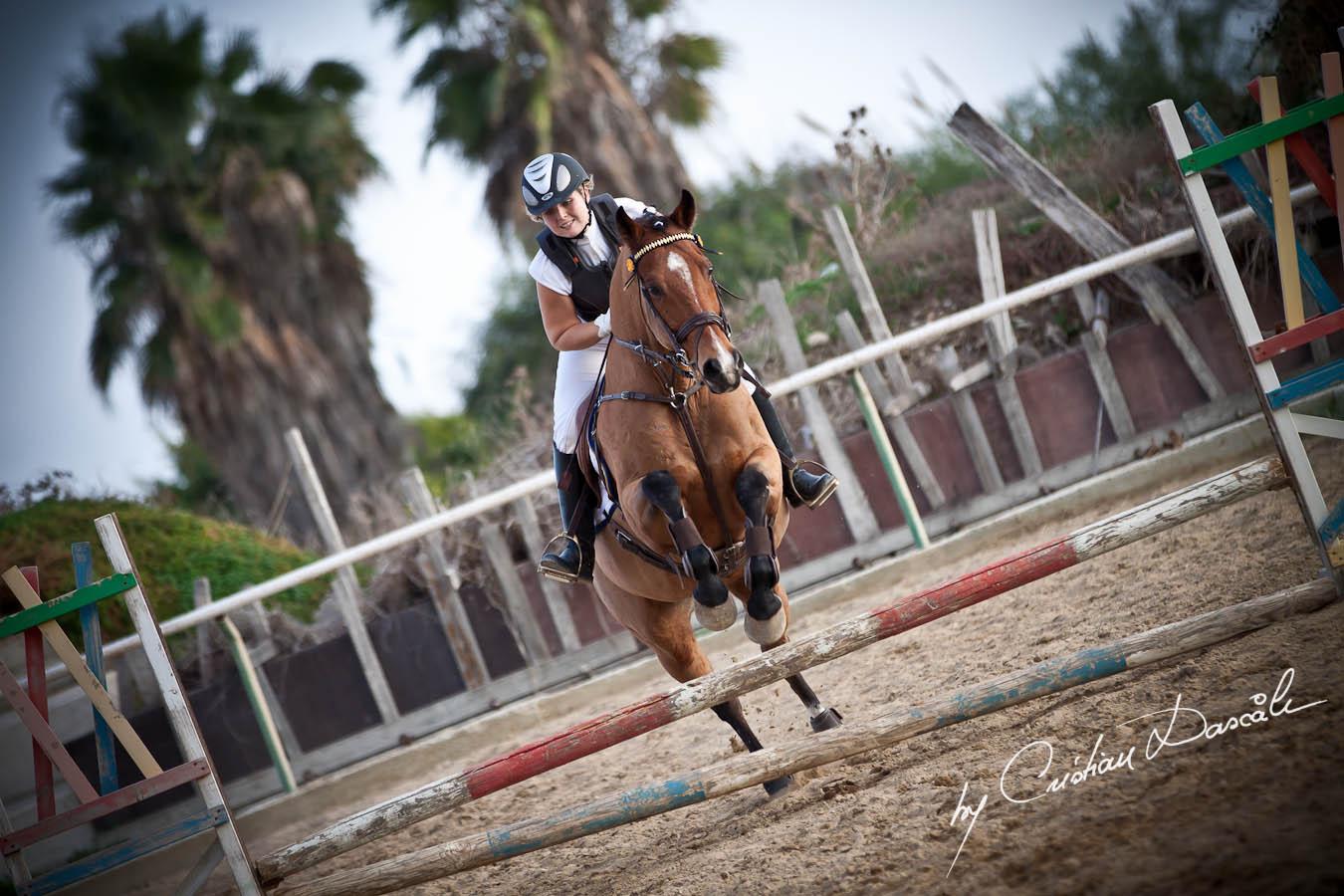 Curium Equestrian Center Horse Riding Competition Of 2011