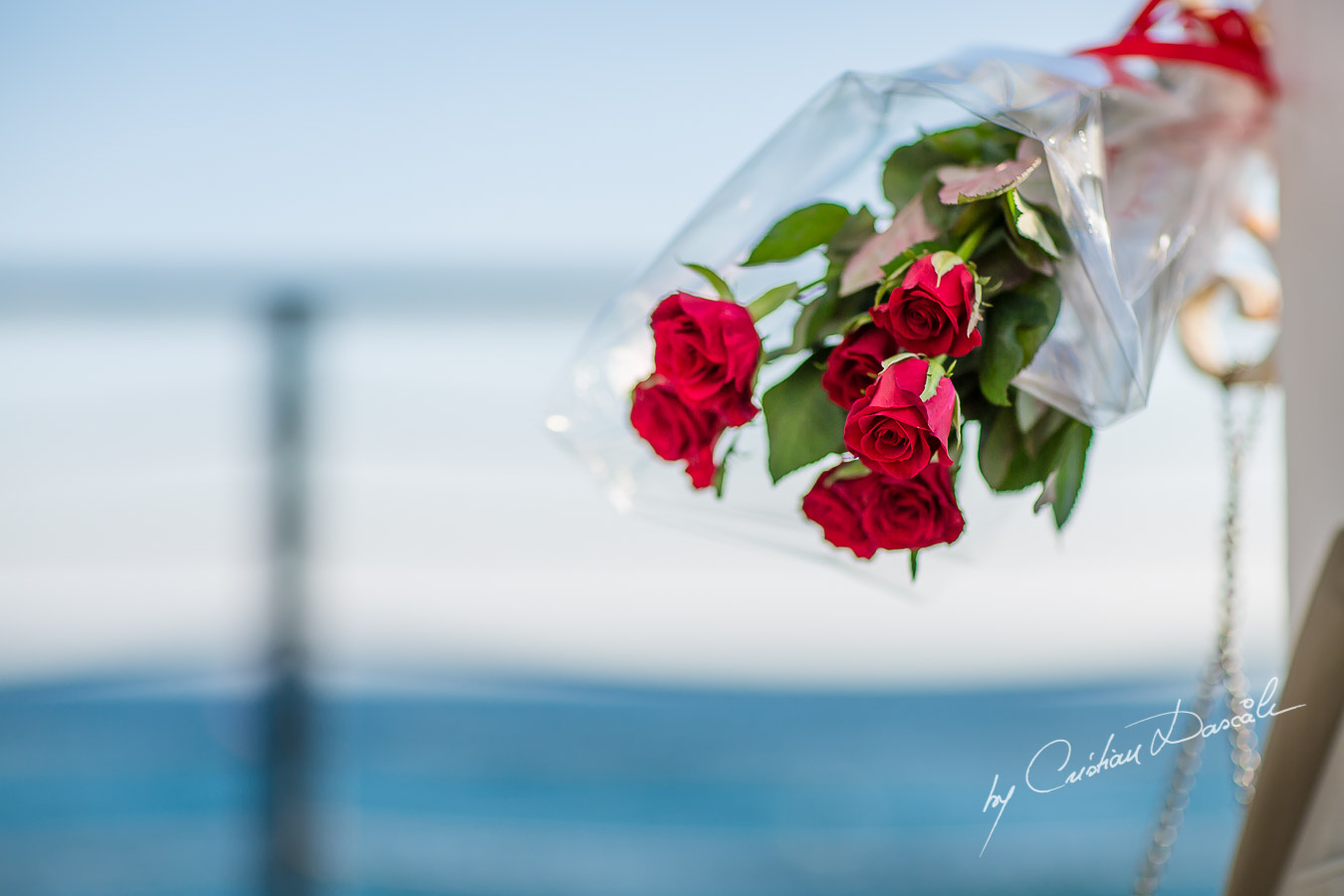 Beach Proposal Photo Session - 17