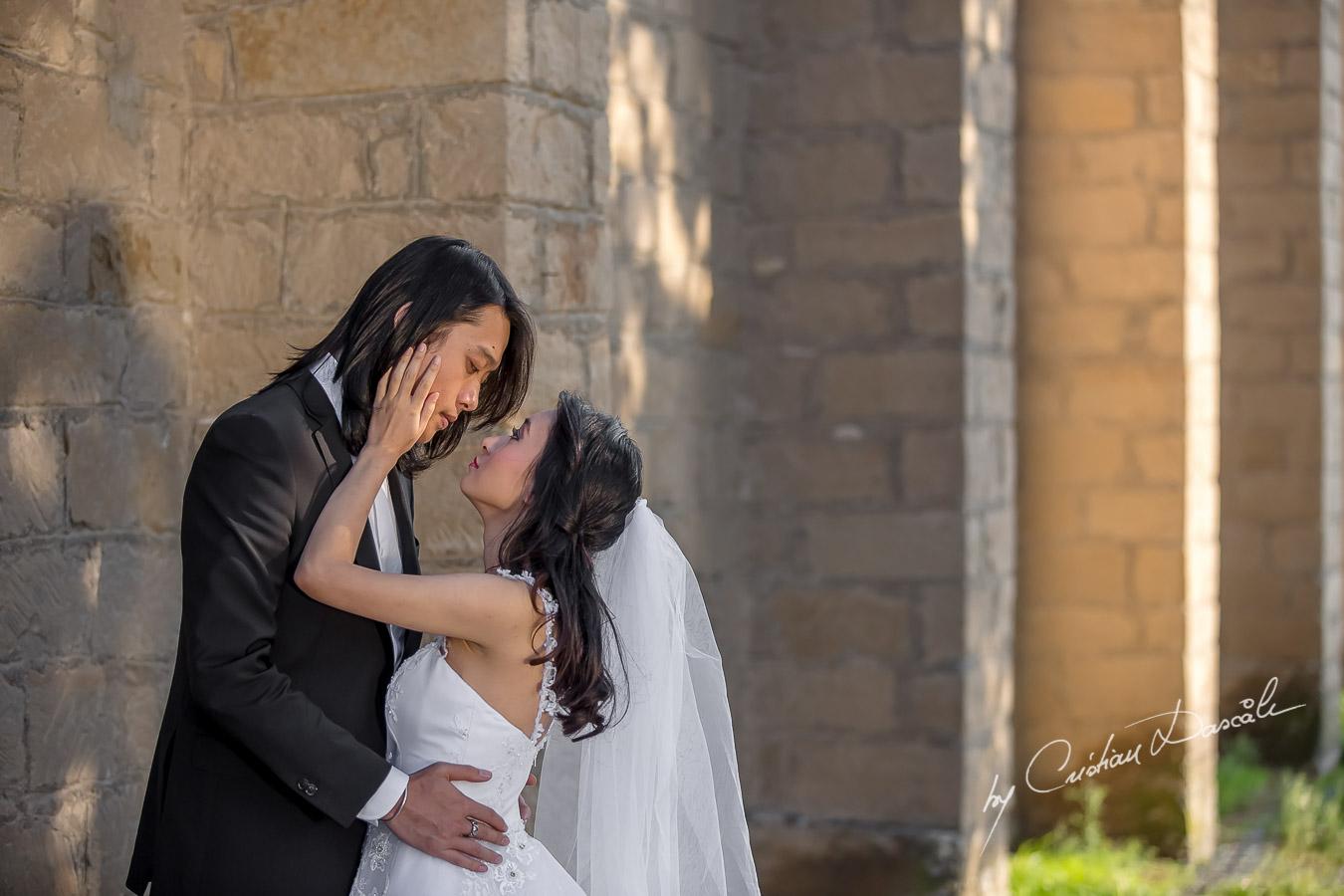 Pre Wedding Photoshoot in Cyprus - 08