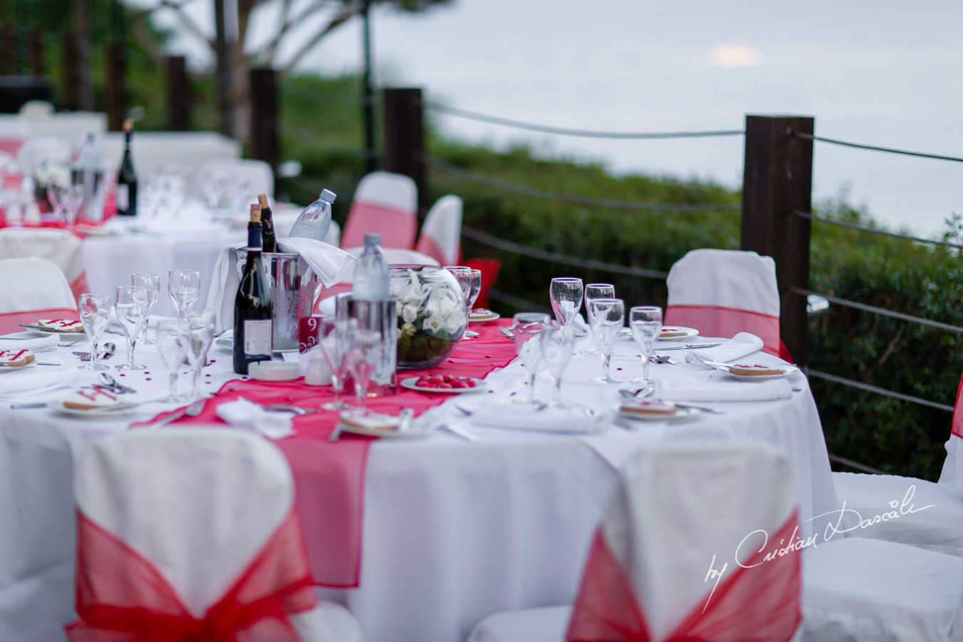 Beautiful Wedding at Grecian Park - 0042