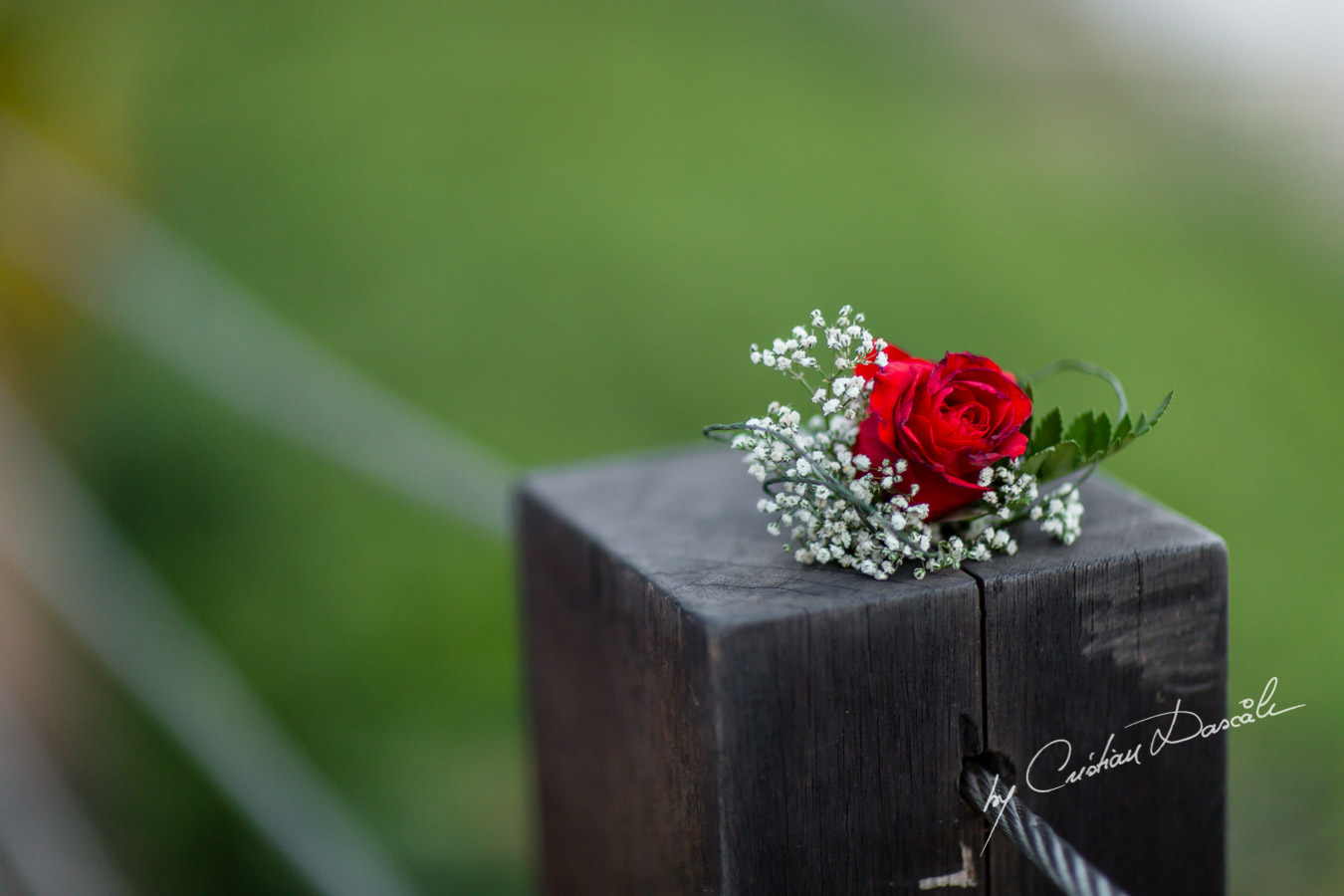 Beautiful Wedding at Grecian Park - 0045