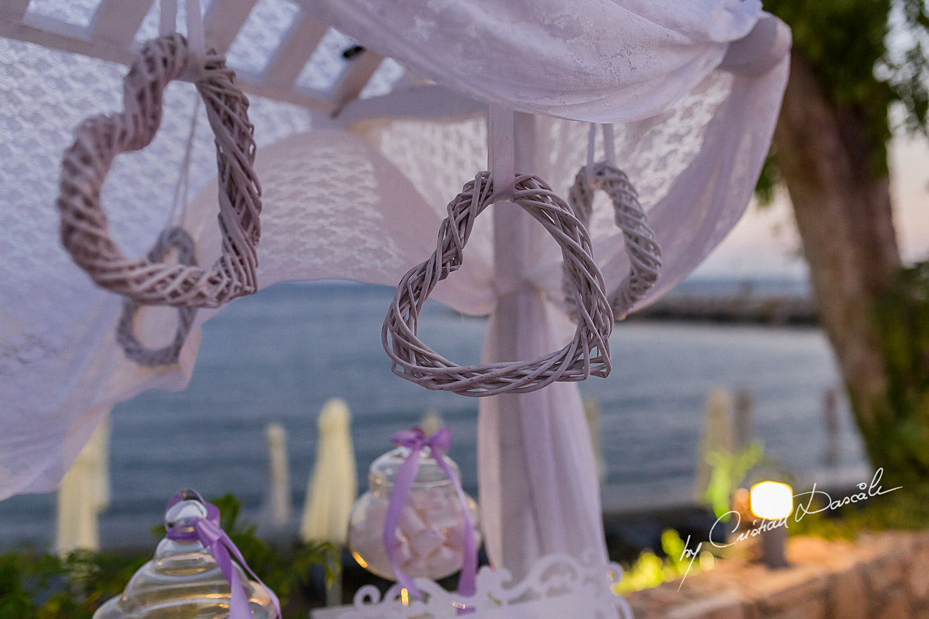 Royal Apollonia Wedding - 79