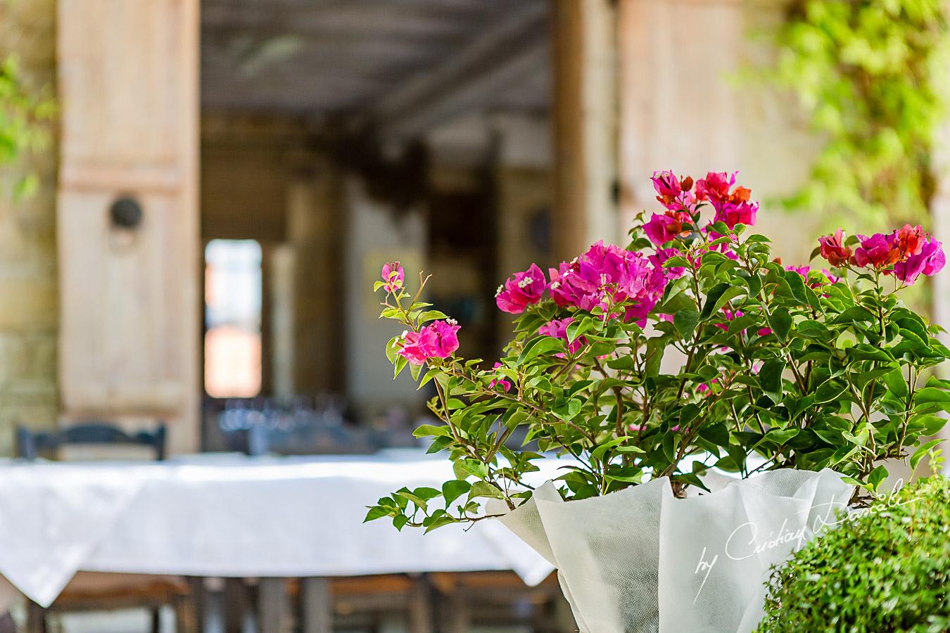 Elegant Wedding at Apokryfo, Lofou - 04
