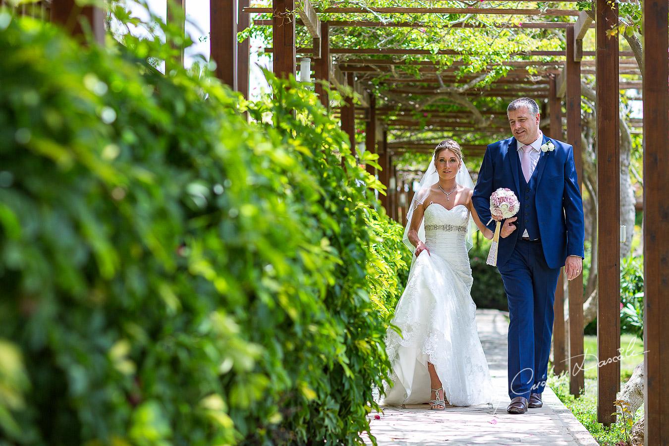 Wedding Pictures Nissi Beach Hotel