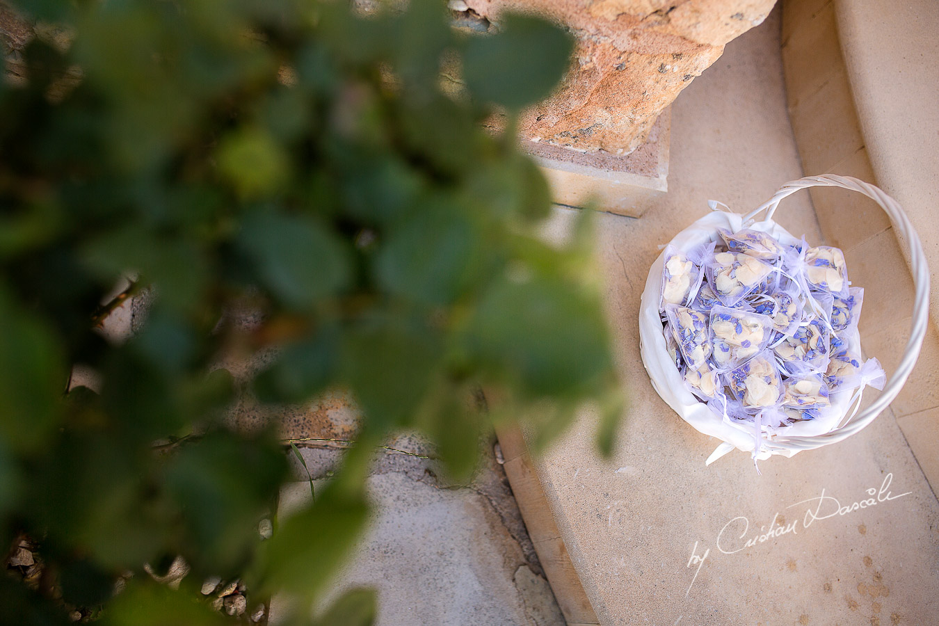 Wedding confetti and flower petals captured at a wedding at Minthis Hills in Cyprus, by Cristian Dascalu.