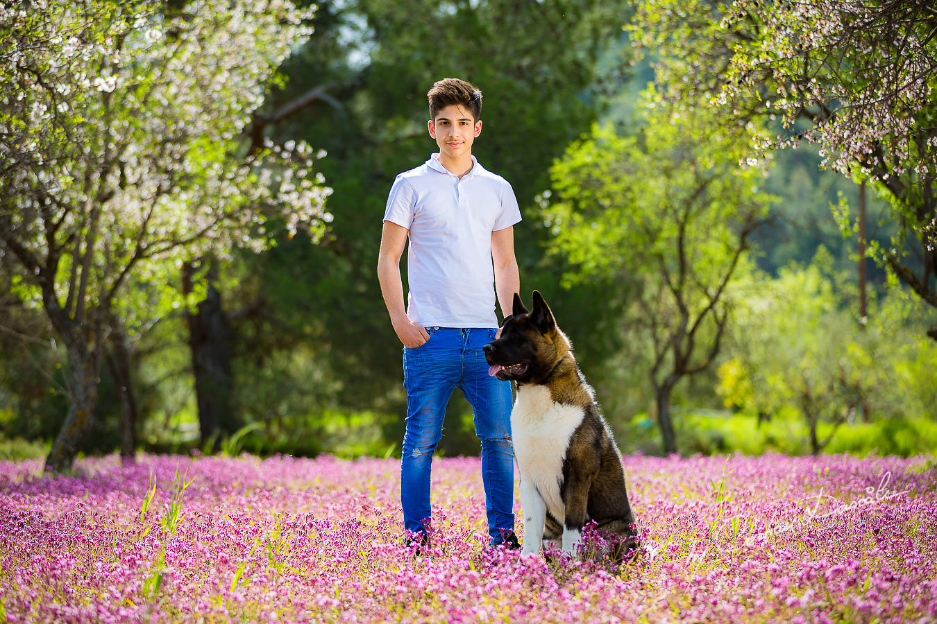Alex and his Akita dog photographed in Klirou village, Nicosia district, during an amazing family photography in Nicosia by Cyprus Photographer Cristian Dascalu.